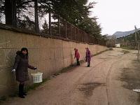 24 марта сотрудники школы приняли участие в субботнике по благоустройству территории школы.